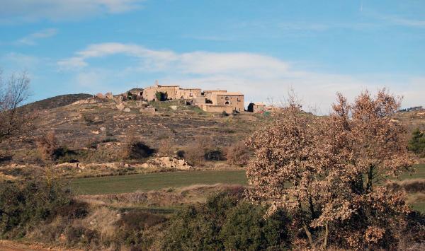26.01.2015 vista poble  Pinós -  Ramon Sunyer