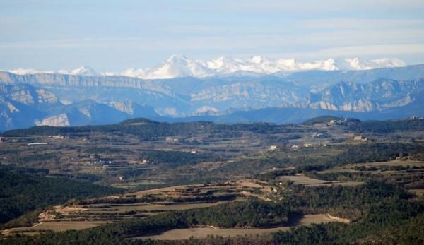 17.03.2015 paisatge  Matamargó -  Ramon Sunyer