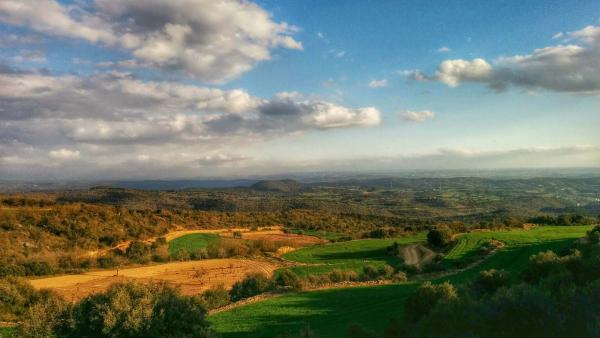05.04.2015 paisatge  Biosca -  Ramon Sunyer