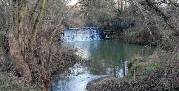 Espace fluvial  Peixera del molí del Cava - Auteur Ramon Sunyer (2014)