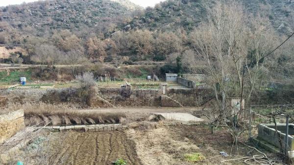 08.02.2015 Horts  Sanaüja -  Ramon Sunyer