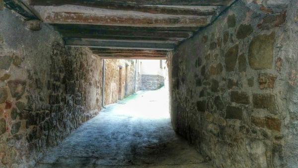 08.02.2015 Portal  Sanaüja -  Ramon Sunyer
