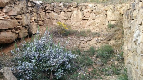 06.04.2015 Qualsevol indret és bo  L'Aguda -  Ramon Sunyer