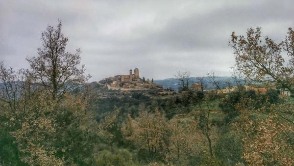 08.02.2015 Vista del poble  Lloberola -  Ramon Sunyer