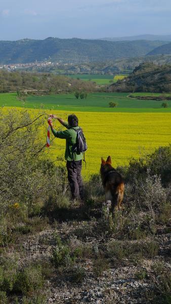 25.04.2015 Senyalitzant la caminada popular de 2015  Torà -  Xavi