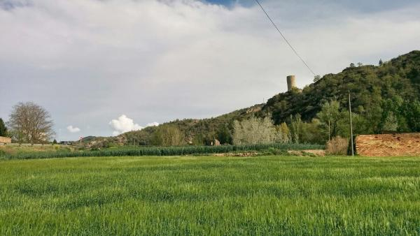 26.04.2015 sembrats  Castellfollit de Riubregós -  Ramon Sunyer