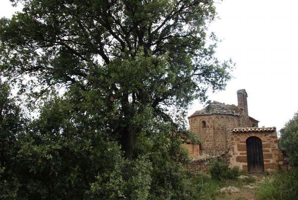 29.04.2013 Ermita Sant Pere de mas Pujol  Les Cases de la Serra -  Jaume Moya