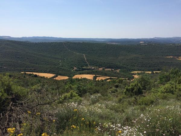 02.06.2015 vista de la vall de Cellers  Claret -  Grans Reptes