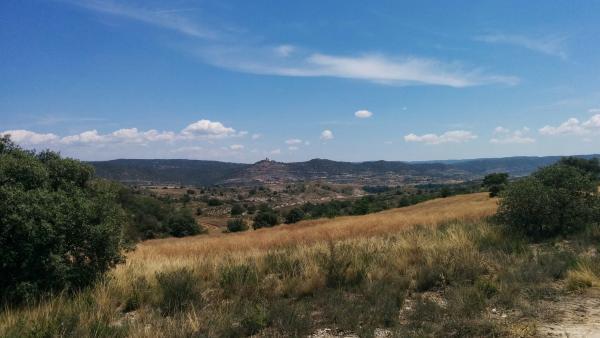 21.06.2015 camps de cereals  L'Alzina -  Ramon Sunyer