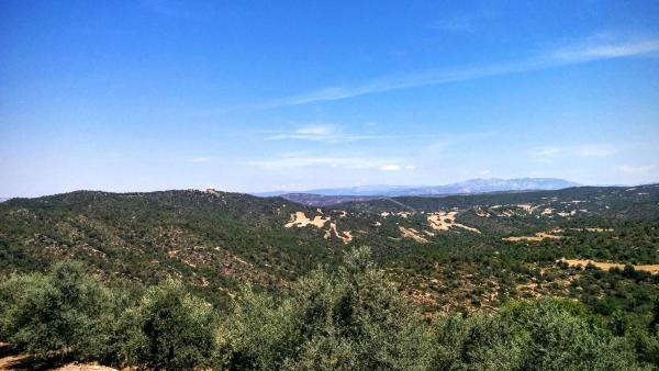 21.06.2015 Vista de Figuera d'Aguda  Ribelles -  Ramon Sunyer