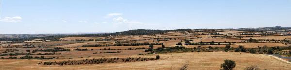 19.07.2015 Des de mas Nadal cap a Massoteres  Selvanera -  Ramon Sunyer