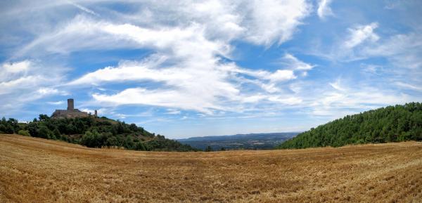 26.07.2015 Castell  Boixadors -  Ramon Sunyer