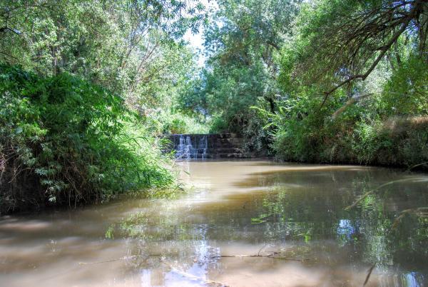 19.07.2015 Peixera del molí del Cava  al riu Llobregós  Puig-Arner -  Ramon Sunyer