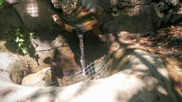 09.08.2015 La bassa dels Dolors desaigua al Llanera  Torà -  Ramon Sunyer