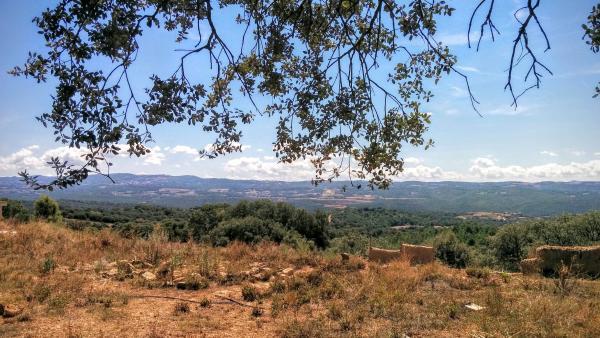 16.08.2015 paisatge  Vallferosa -  Ramon Sunyer