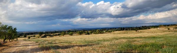 17.08.2015 mirant al sud  Guissona -  Ramon Sunyer