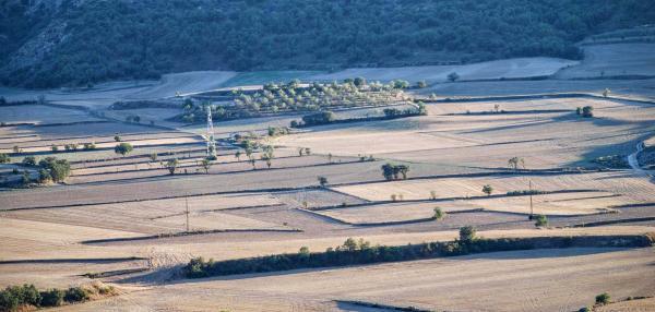 21.08.2015 Vista de les Torrovelles  Torà -  Ramon Sunyer