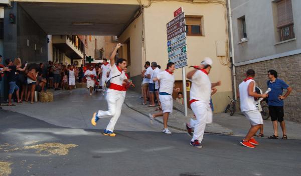 29.08.2015 2a Baixada d'andròmines  Torà -  Ramon Sunyer