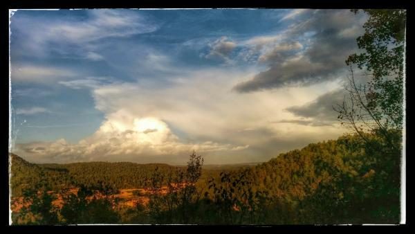 27.10.2014 Boscos de Madrona  -  Ramon Sunyer