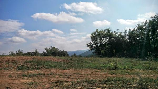 18.10.2015 paisatge  Llanera -  Ramon Sunyer