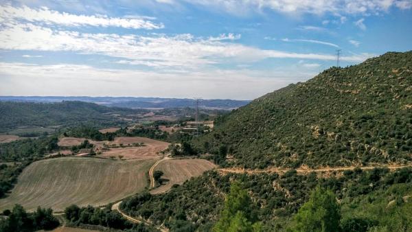 11.10.2015 paisatge  Cellers -  Ramon Sunyer