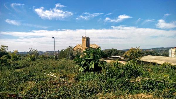 11.10.2015 hort  Sant Serni -  Ramon Sunyer