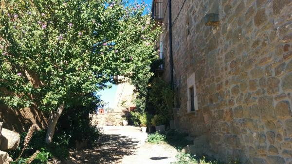 11.10.2015 detall carrer  Sant Serni -  Ramon Sunyer