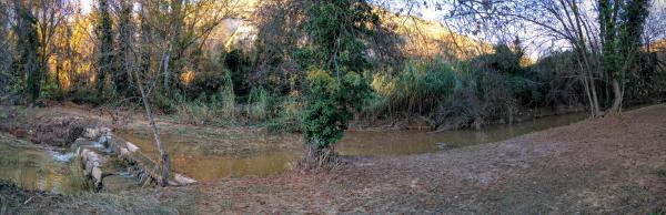 05.11.2015 Resclosa del Llanera  Torà -  Ramon Sunyer