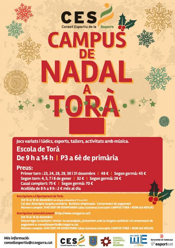 cartell Campus de Nadal Torà 2015