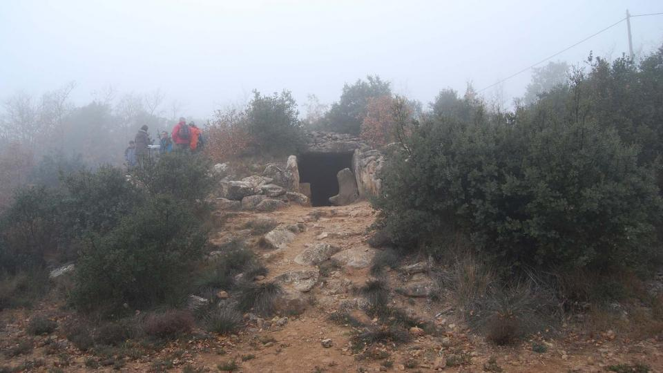 20.12.2015 Dolmen el solstici d'hivern  Llanera -  Ramon Sunyer