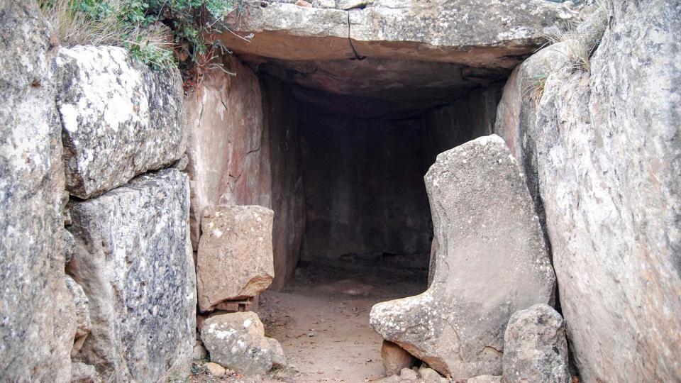 20.12.2015 dolmen  Llanera -  Ramon Sunyer