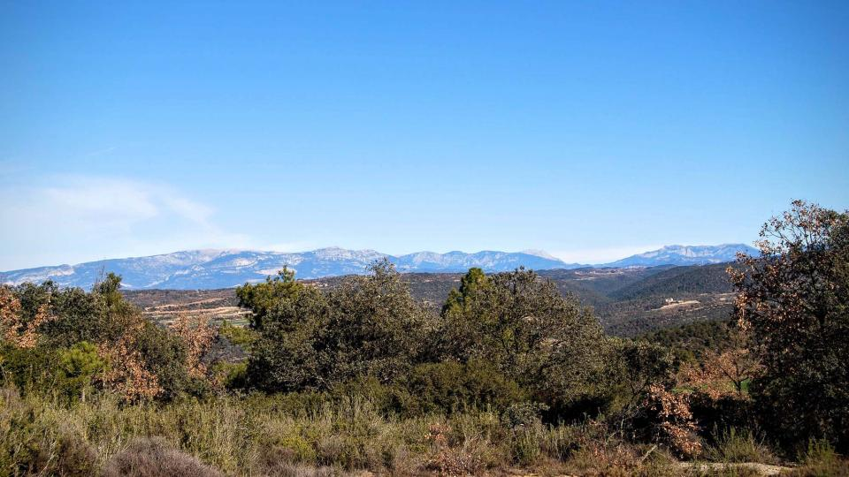 27.12.2015 el pre Pirineu  Lloberola -  Ramon Sunyer
