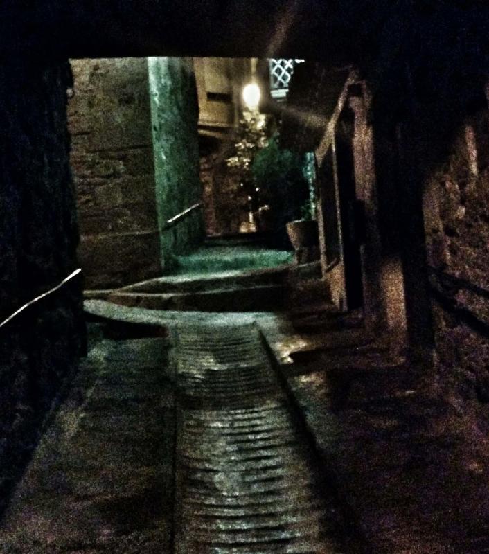 29.12.2015 vilavella  Torà -  Ramon Sunyer