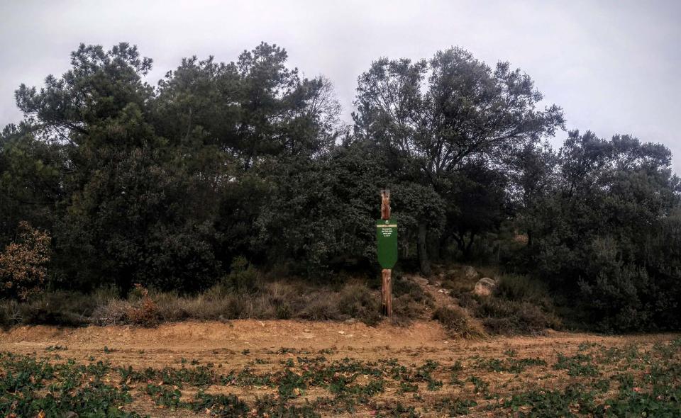 01.01.2016 Clot dels Nens Xics  Vallferosa -  Ramon Sunyer
