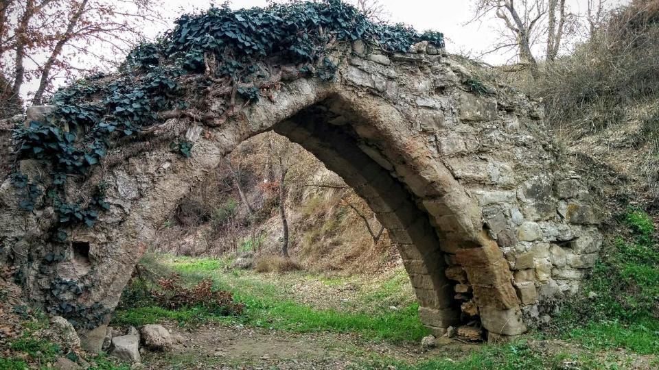 Pont de  el Diable - Autor Ramon Sunyer (2016)