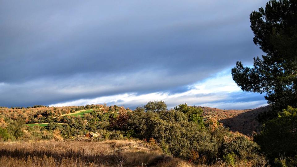 10.01.2016 paisatge  Vallferosa -  Ramon Sunyer