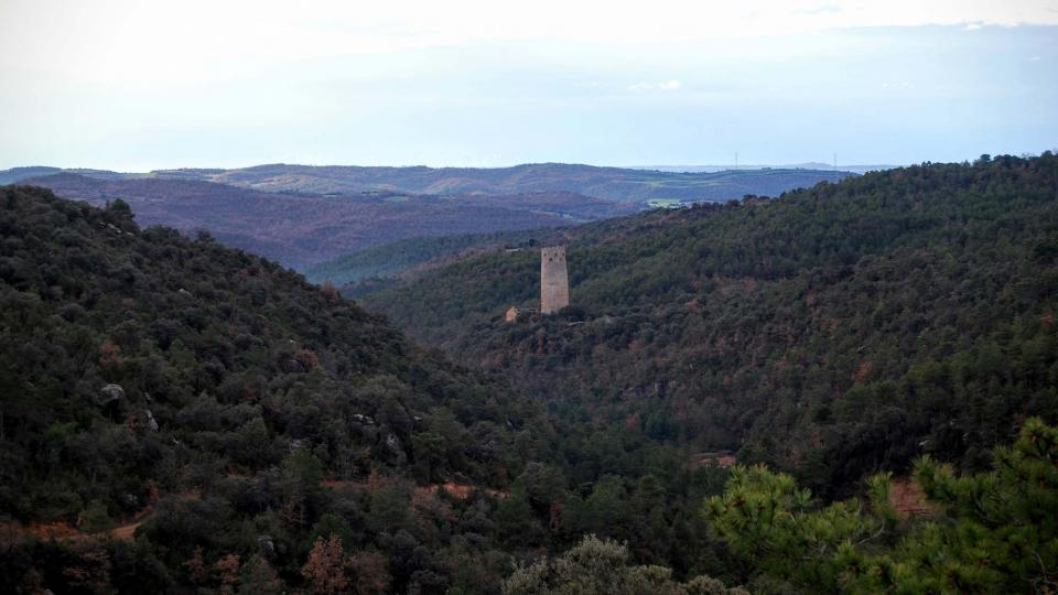 10.01.2016 la torre entre boscos  Vallferosa -  Ramon Sunyer