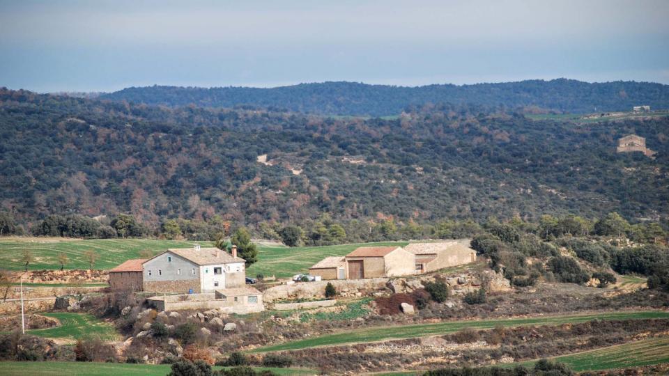 01.01.2016 Marquilles  Vallferosa -  Ramon Sunyer