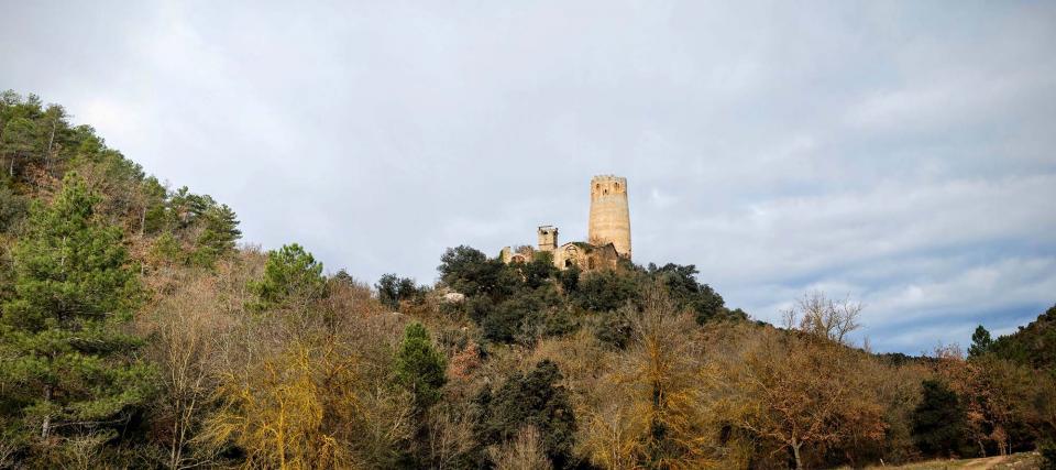 10.01.2016 vista de la torre des de la vall  Vallferosa -  Ramon Sunyer