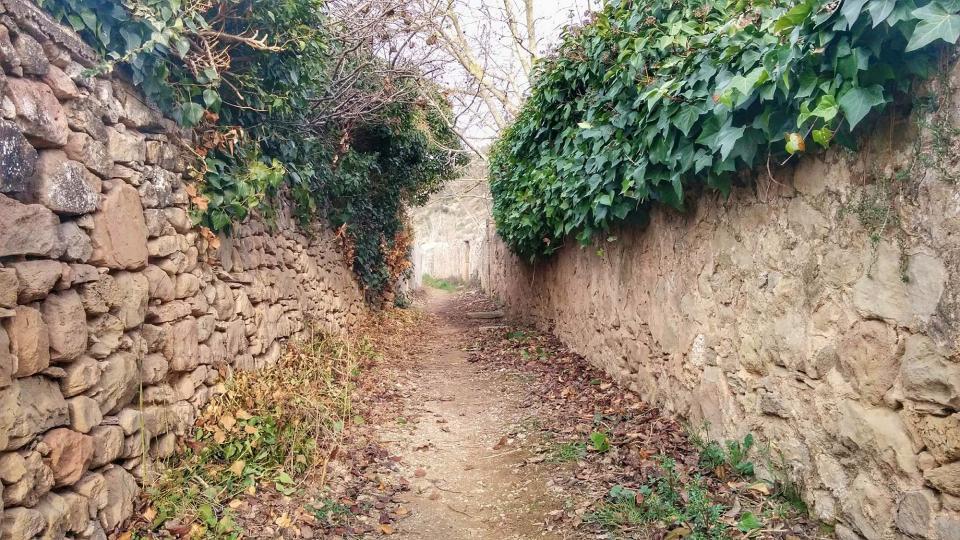Ruta de senderisme de Torà - L'Aguda - Torà - Autor Ramon Sunyer (2016)