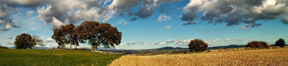 09.02.2016 paisatge  Vicfred -  Ramon Sunyer
