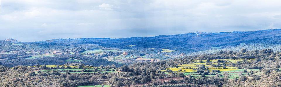 10.04.2016   Vallferosa -  Ramon Sunyer