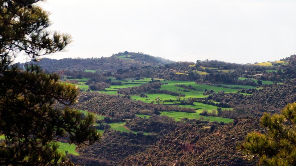 10.04.2016   L'Aguda -  Ramon Sunyer