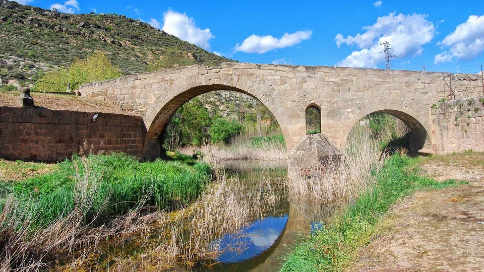 24.04.2016 Pont de les merites  Torà -  Ramon Sunyer