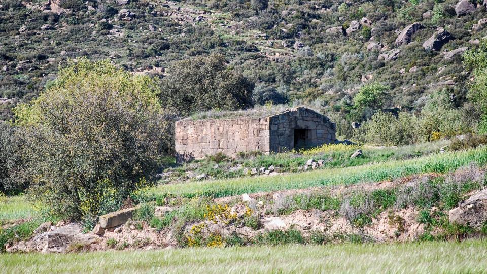 24.04.2016 cabana  Biosca -  Ramon Sunyer