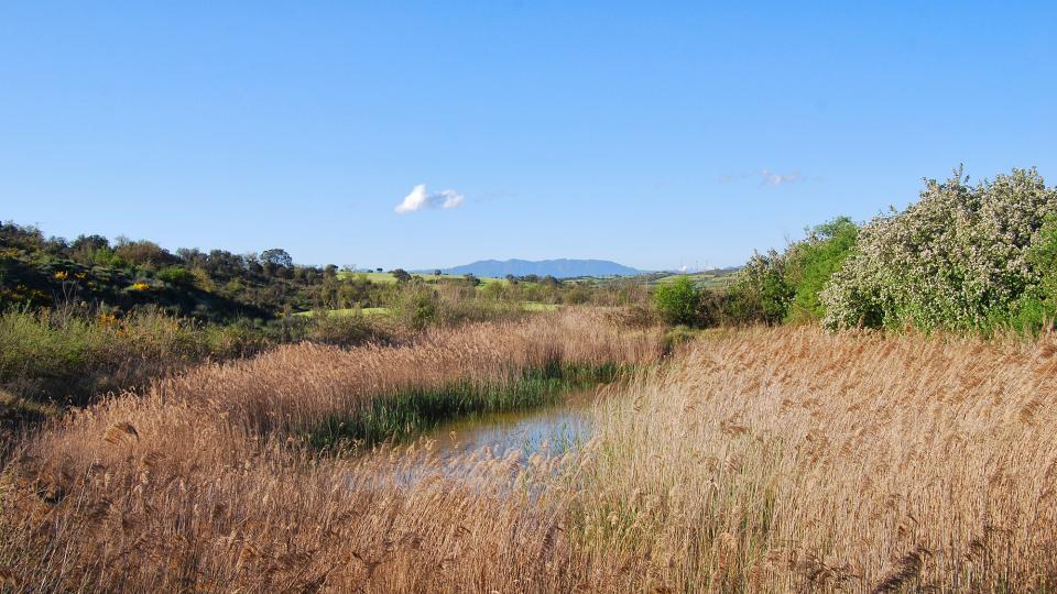 Espace fluvial  Patamolls de Granollers - Auteur Ramon Sunyer (2016)