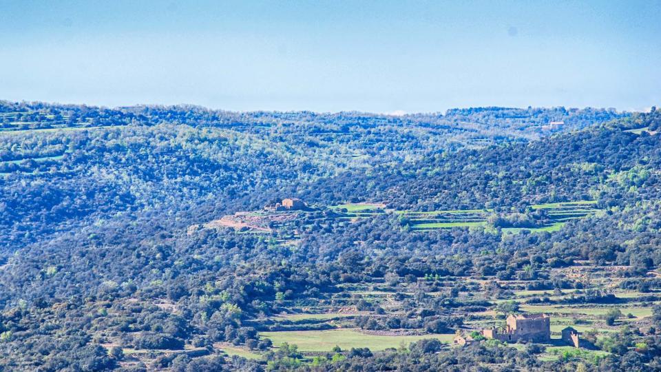 La zona nord del territori comparteix paisatge amb el Solsonès Foto: Ramon Sunyer - Vallferosa