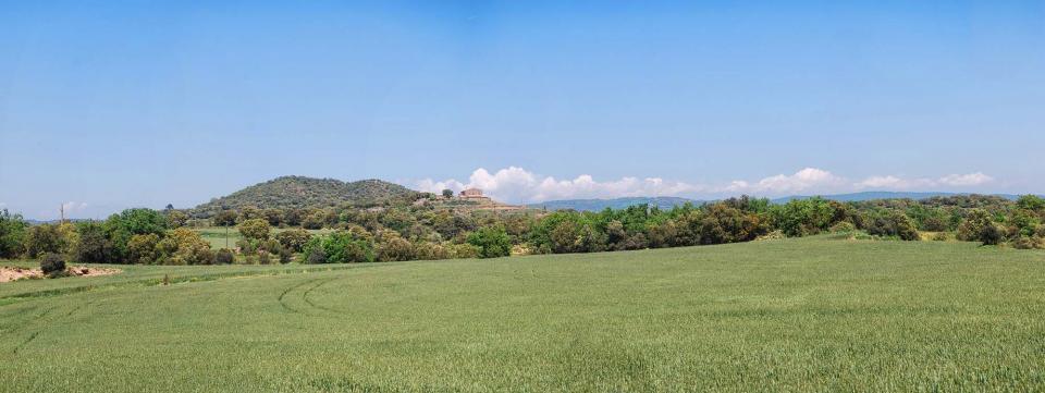 15.05.2016 blats  Puigredon -  Ramon Sunyer