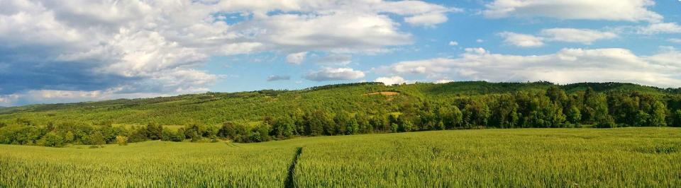 15.05.2016 serra de castelltallat  Prades de la Molsosa -  Ramon Sunyer