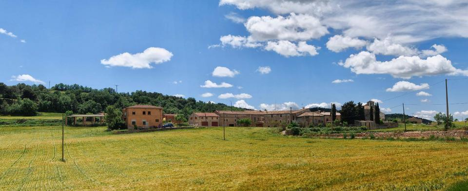 29.05.2016 paisatge  Sant Pere de l'Arç -  Ramon Sunyer
